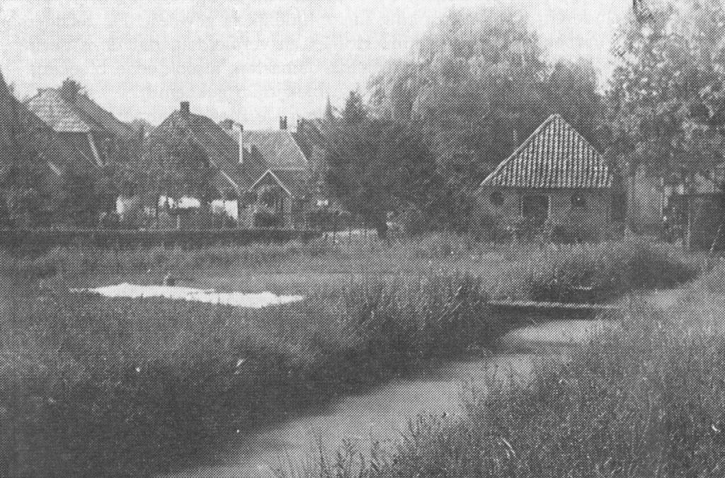 bleekveld Diepenheim